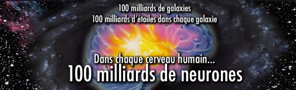 100 milliards de neurones copie.jpg