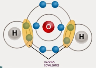 9a1c8__biologie-liaison-covalente-polaire.jpg
