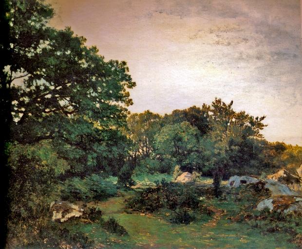 Bazille-Forêt de Fontainebleau-0050025.jpg