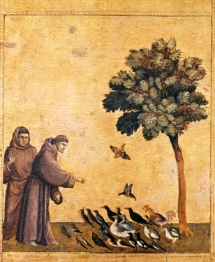 Giotto._St Franois et les oiseaux -Predella_3.jpg