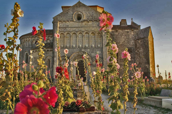 Talmont-sur-gironde église Sainte-Radegonde et roses trémières _ PBVF_P. BERNARD.jpg