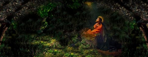 Tulle-Christ priant-Hoffmann1.jpg