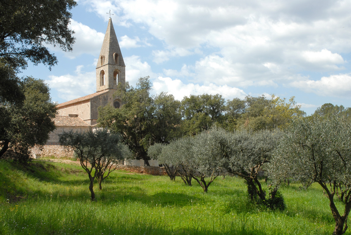 abbaye-thoronet-041.jpg