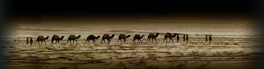 Caravane afghane-48N copie.jpg