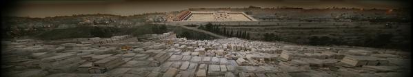 Jérusalem-Cimetière et templePPP2 copie.jpg