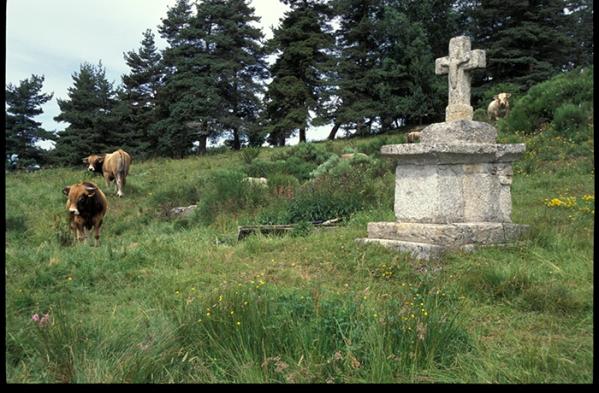 Croix romane-Massif central1096 copie
